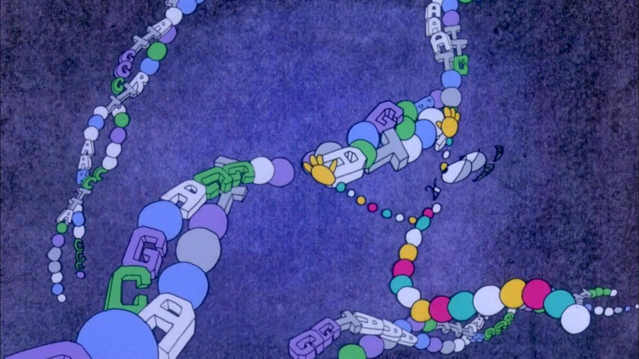Cadena ADN en construcció