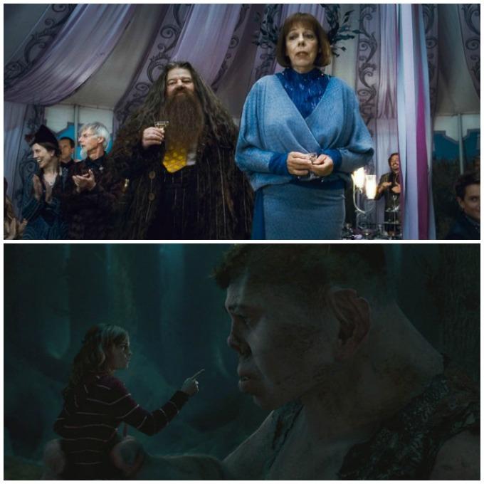 Gegants Harry Potter
