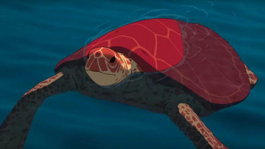 tortuga-roja