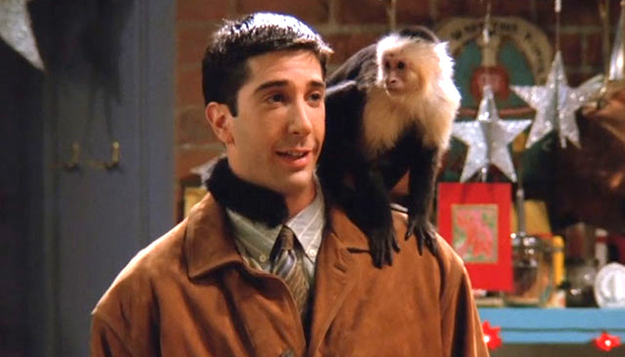 Els micos més famosos del cine